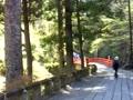 榛名神社(鳥居~隋神門~参道)
